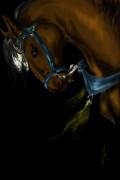 Kaleo s Art - Безимени-1234567891011++.jpg