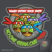 Изображения TMNT, их символика и т.п. на различных предметах - Angry-Mutant-Ninja-Birds by weRsNs.jpg