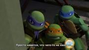 Серия 3. Черепашка с характером Turtle Temper  - Скрин-пример 2.jpg