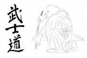 TMNT рисунки от Michelangelo - Bushido.jpg