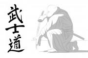 TMNT рисунки от Michelangelo - Bushido_shade.jpg