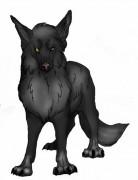Бродяга - просто помесь волка с собакой. - AoAGi59U5XY.jpg