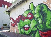 Изображения TMNT, их символика и т.п. на различных предметах - Граффити3.jpg