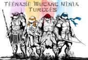 Зарубежный Фан-Арт - heroes_in_a_half_shell__turtle_power__by_saintyak-d7u2eql.jpg