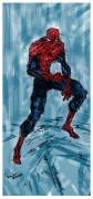 Тот-же спайди, только без лишнего фона. - Spider_man_by_Dima_bobr.jpg