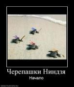Приколы над ТMNТ - 1250414601_622848_cherepashkinindzya.jpg