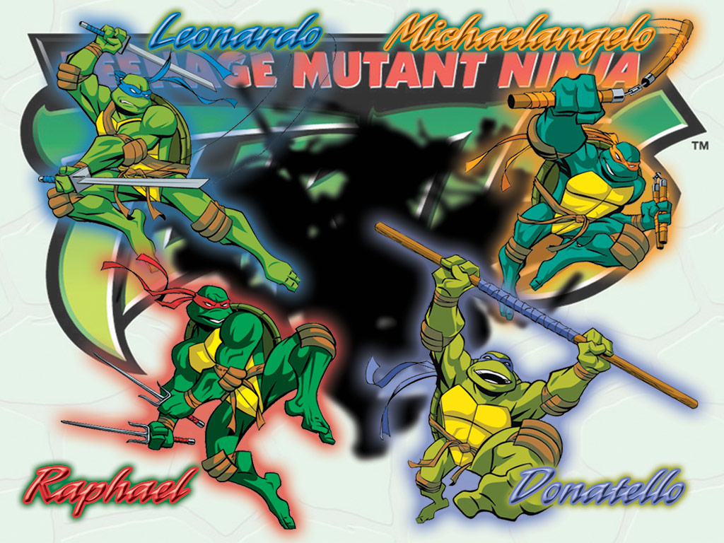 TMNT wallpaper 2003-2009 series (14)