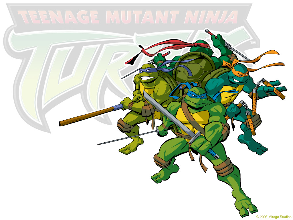TMNT wallpaper 2003-2009 series (4)
