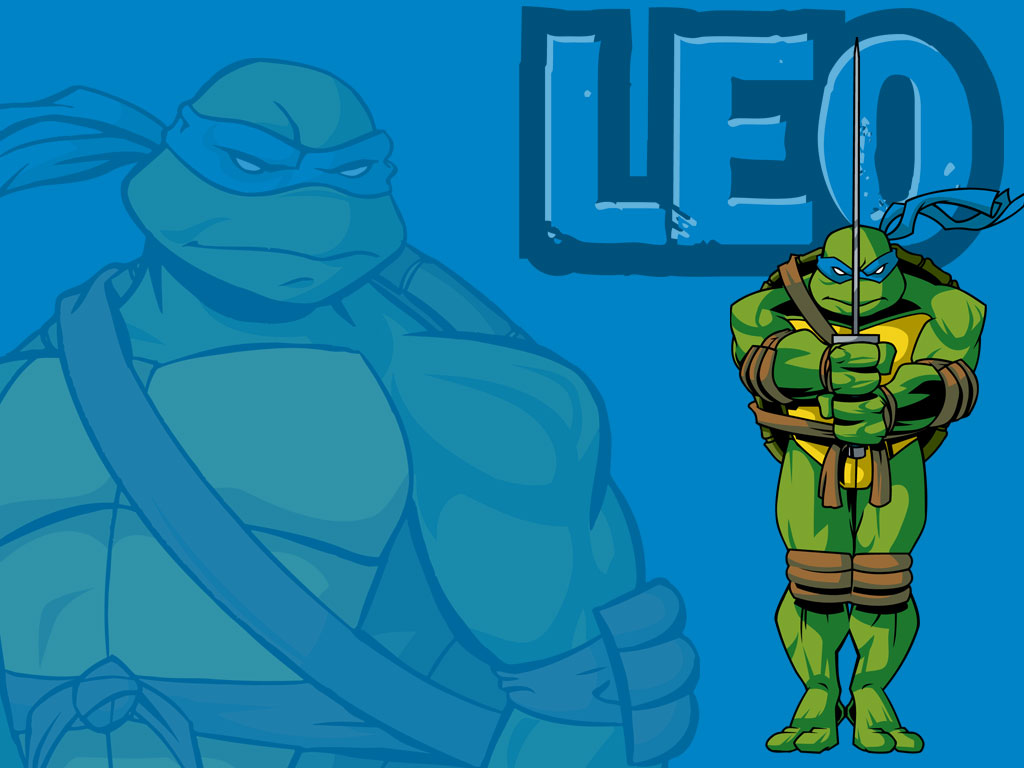 TMNT wallpaper 2003-2009 series (45)