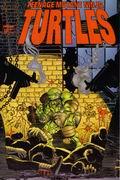 Image Comics. TMNT #12 (RUS)
