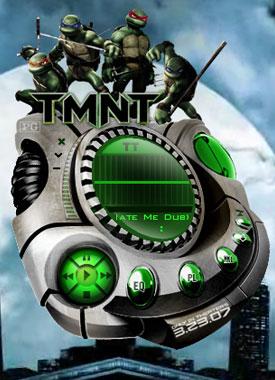 tmnt2007