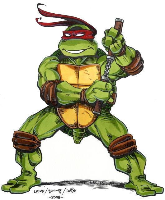 Michelangelo from comics (2)
