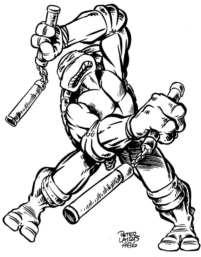 Michelangelo from comics (3)