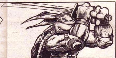 Leonardo from comics (2)