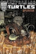 Micro-series #5: Splinter