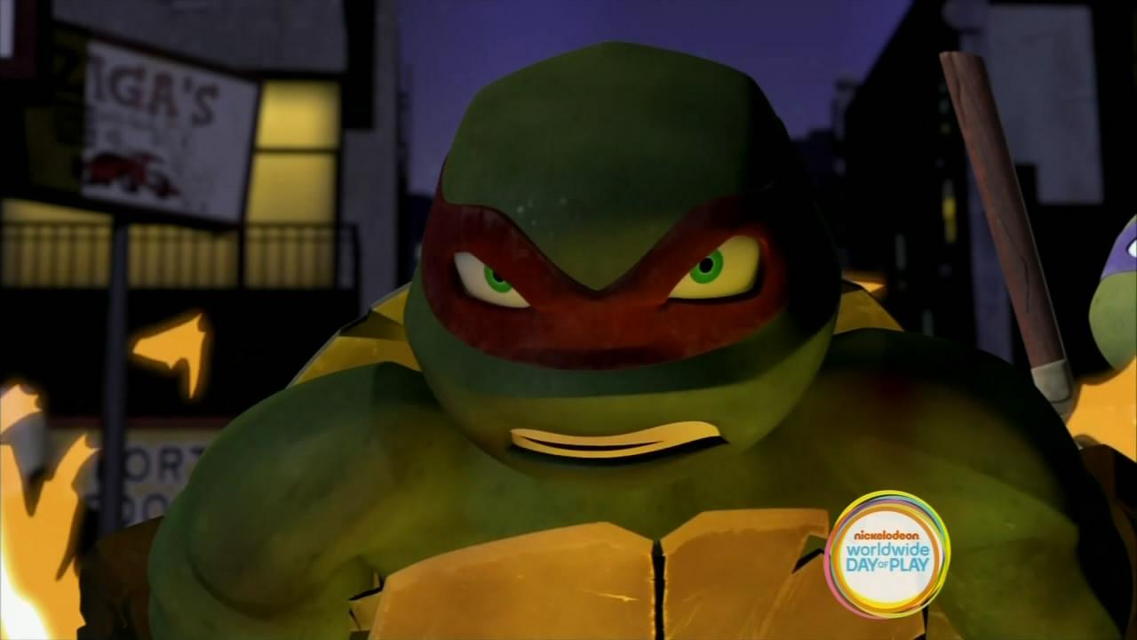 Turtle Temper (3)